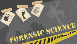 forensic definition
