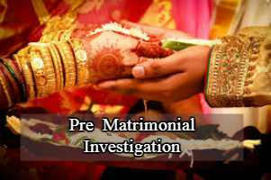 Pre Matrimonial Investigation, marriage Investigation, matrimonial detective agency, ,start private detective agency, how to start private detective agency in India,